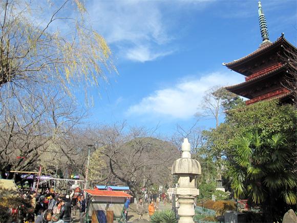 中山法華経寺へ